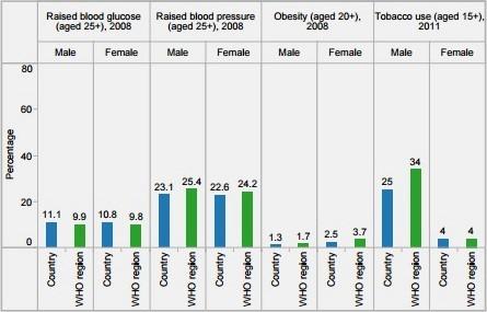 Adult's Risk Factors